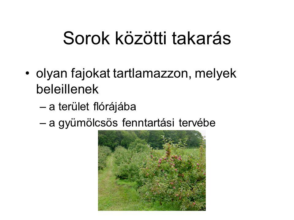 Sorok közötti takarás olyan fajokat tartlamazzon, melyek beleillenek –a terület flórájába –a gyümölcsös fenntartási tervébe