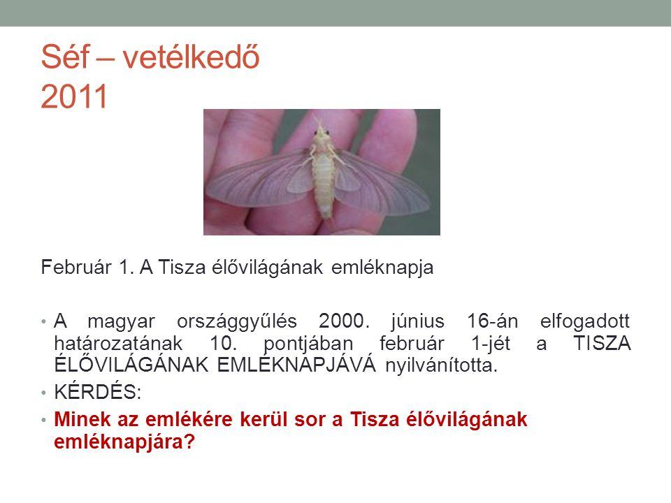 Séf – vetélkedő 2011 Február 1. A Tisza élővilágának emléknapja A magyar országgyűlés 2000.