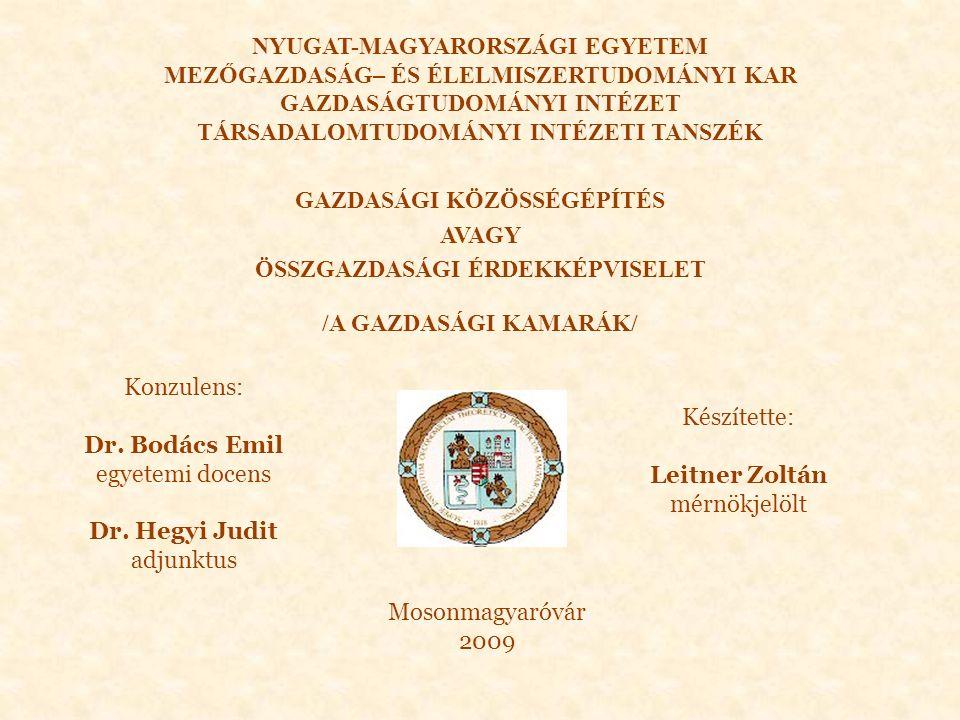 GAZDASÁGI KÖZÖSSÉGÉPÍTÉS AVAGY ÖSSZGAZDASÁGI ÉRDEKKÉPVISELET /A GAZDASÁGI KAMARÁK/ Konzulens: Dr.