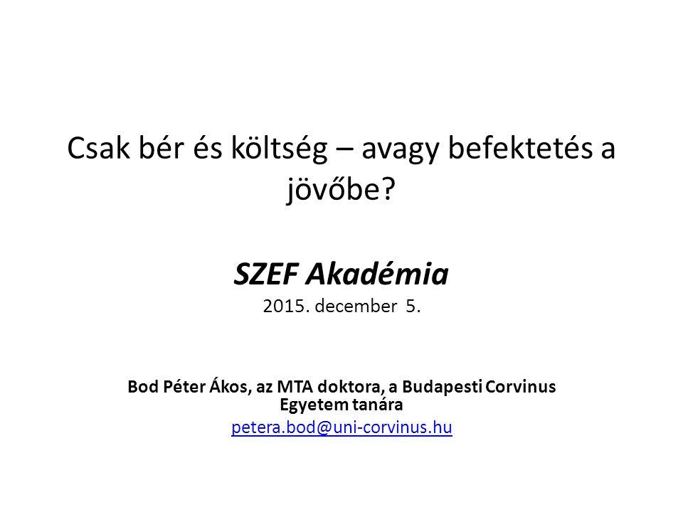 Csak bér és költség – avagy befektetés a jövőbe. SZEF Akadémia 2015.