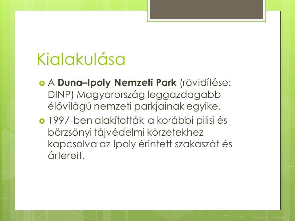 Kialakulása  A Duna–Ipoly Nemzeti Park (rövidítése: DINP) Magyarország leggazdagabb élővilágú nemzeti parkjainak egyike.  1997-ben alakították a kor
