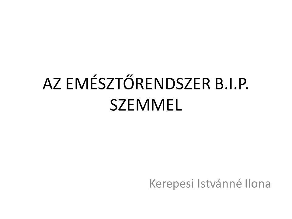 AZ EMÉSZTŐRENDSZER B.I.P. SZEMMEL Kerepesi Istvánné Ilona
