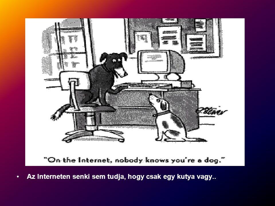 Az Interneten senki sem tudja, hogy csak egy kutya vagy..