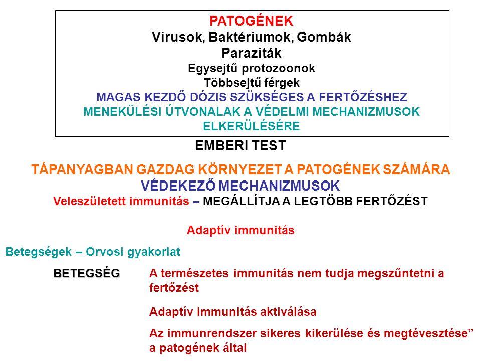 PATOGÉNEK Virusok, Baktériumok, Gombák Paraziták Egysejtű protozoonok Többsejtű férgek MAGAS KEZDŐ DÓZIS SZÜKSÉGES A FERTŐZÉSHEZ MENEKÜLÉSI ÚTVONALAK A VÉDELMI MECHANIZMUSOK ELKERÜLÉSÉRE EMBERI TEST TÁPANYAGBAN GAZDAG KÖRNYEZET A PATOGÉNEK SZÁMÁRA VÉDEKEZŐ MECHANIZMUSOK Veleszületett immunitás – MEGÁLLÍTJA A LEGTÖBB FERTŐZÉST Adaptív immunitás Betegségek – Orvosi gyakorlat BETEGSÉG BETEGSÉGA természetes immunitás nem tudja megszűntetni a fertőzést Adaptív immunitás aktiválása Az immunrendszer sikeres kikerülése és megtévesztése a patogének által