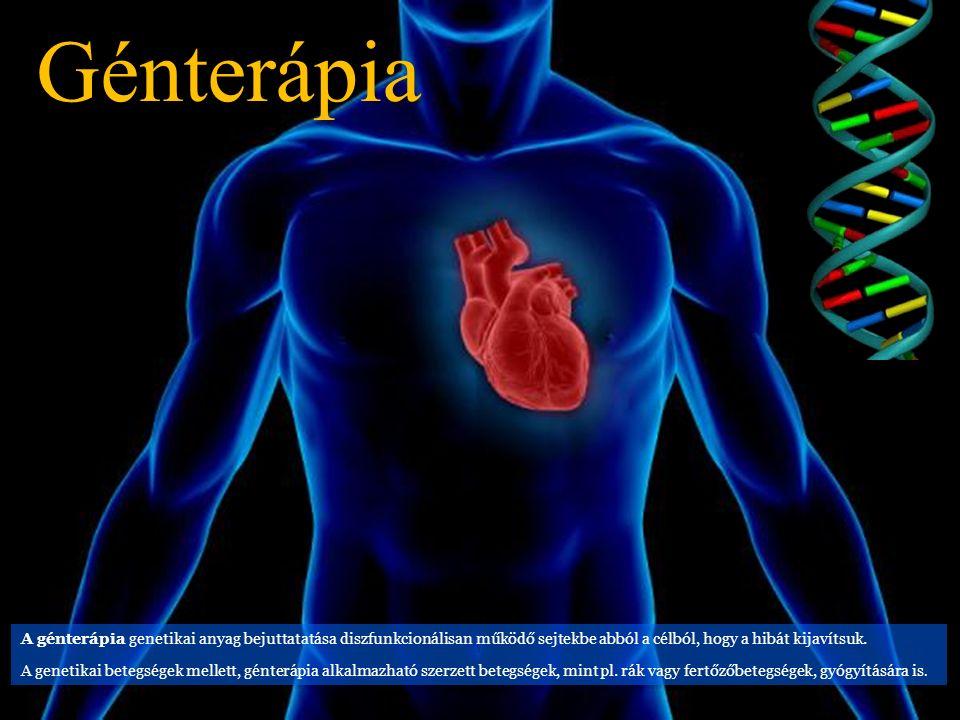 Génterápia A génterápia genetikai anyag bejuttatatása diszfunkcionálisan működő sejtekbe abból a célból, hogy a hibát kijavítsuk.