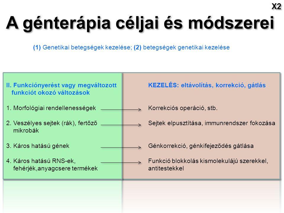 A génterápia céljai és módszerei (1) Genetikai betegségek kezelése; (2) betegségek genetikai kezelése II.