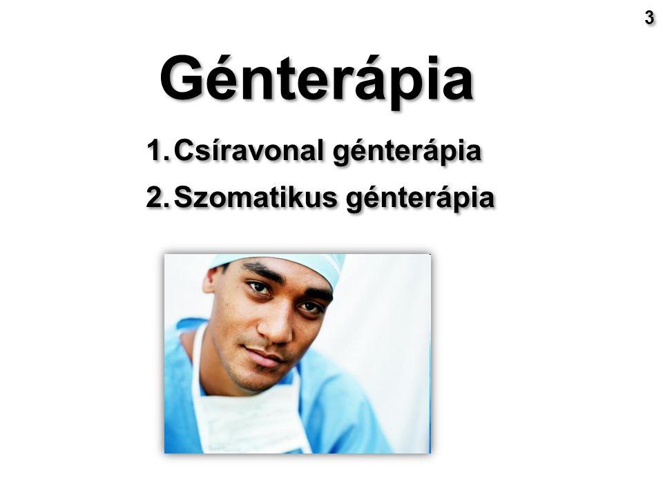 Az ADA génterápiája SCID ( severe combined immunodeficiency disease ): nem funkcionáló B és T limfociták Egyik típusát az ADA (adenozin deamináz) gén mutációja okozza Korábban : csontvelő átültetés ( rokonok csontvelője ) Génterápia : retrovírus vektorral ADA gén bevitele limfocitákba Korábban : csontvelő átültetés ( rokonok csontvelője ) Génterápia : retrovírus vektorral ADA gén bevitele limfocitákba David a buborék fiú 9 9