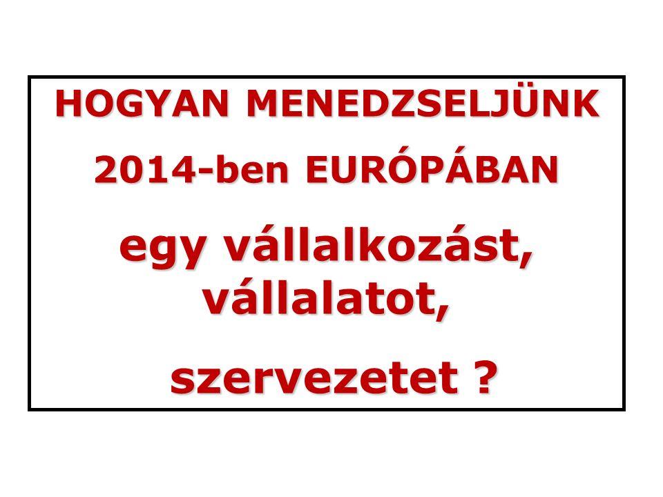 HOGYAN MENEDZSELJÜNK 2014-ben EURÓPÁBAN egy vállalkozást, vállalatot, szervezetet ? szervezetet ?