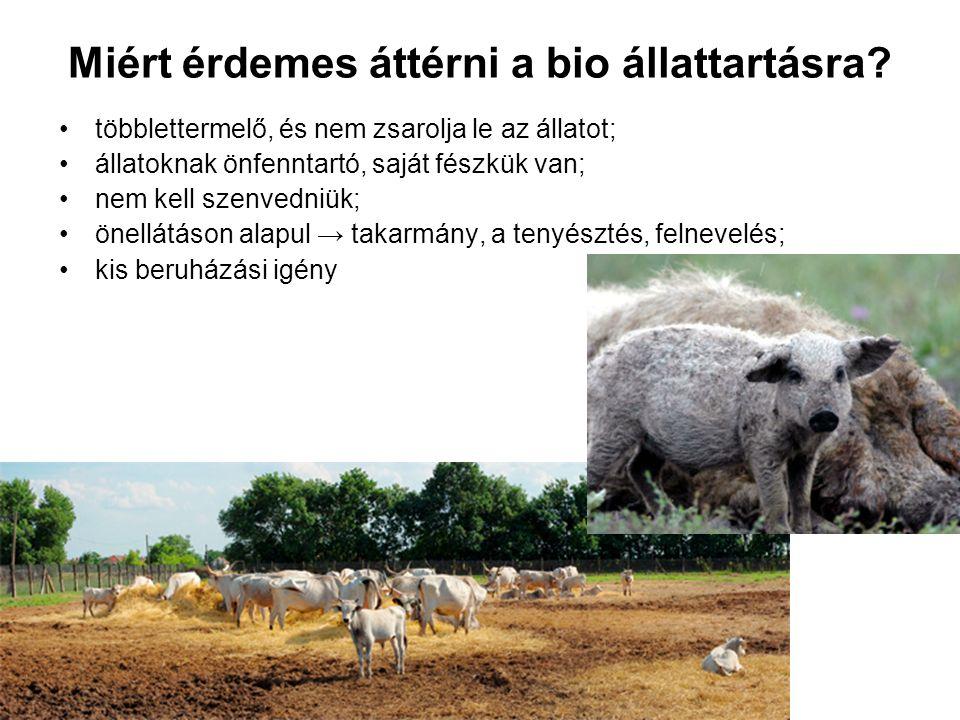 Miért érdemes áttérni a bio állattartásra? többlettermelő, és nem zsarolja le az állatot; állatoknak önfenntartó, saját fészkük van; nem kell szenvedn