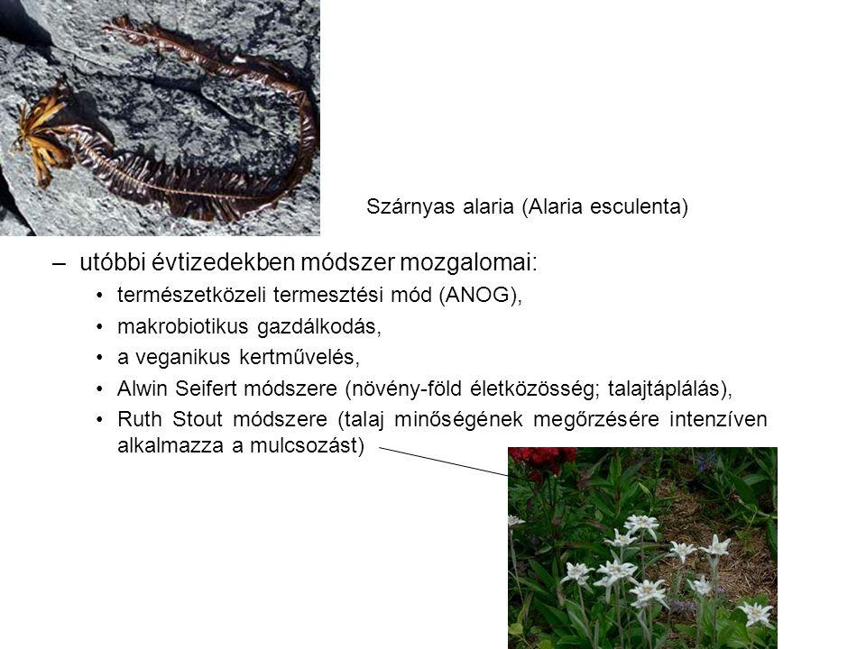 –utóbbi évtizedekben módszer mozgalomai: természetközeli termesztési mód (ANOG), makrobiotikus gazdálkodás, a veganikus kertművelés, Alwin Seifert módszere (növény-föld életközösség; talajtáplálás), Ruth Stout módszere (talaj minőségének megőrzésére intenzíven alkalmazza a mulcsozást) Szárnyas alaria (Alaria esculenta)