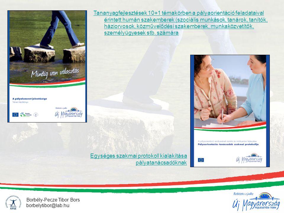 Pályatanácsadók és pályaorientációs részfeladatokat ellátó humán szakemberek hálózatba szervezése - magyarországi szakképzett pályatanácsadók összegyűjtése - szakmai érdekvédelem, - egységes módszertan, - továbbképzés, szupervízió - elérhetővé válás a tanácskérők felé - létszám: ??.