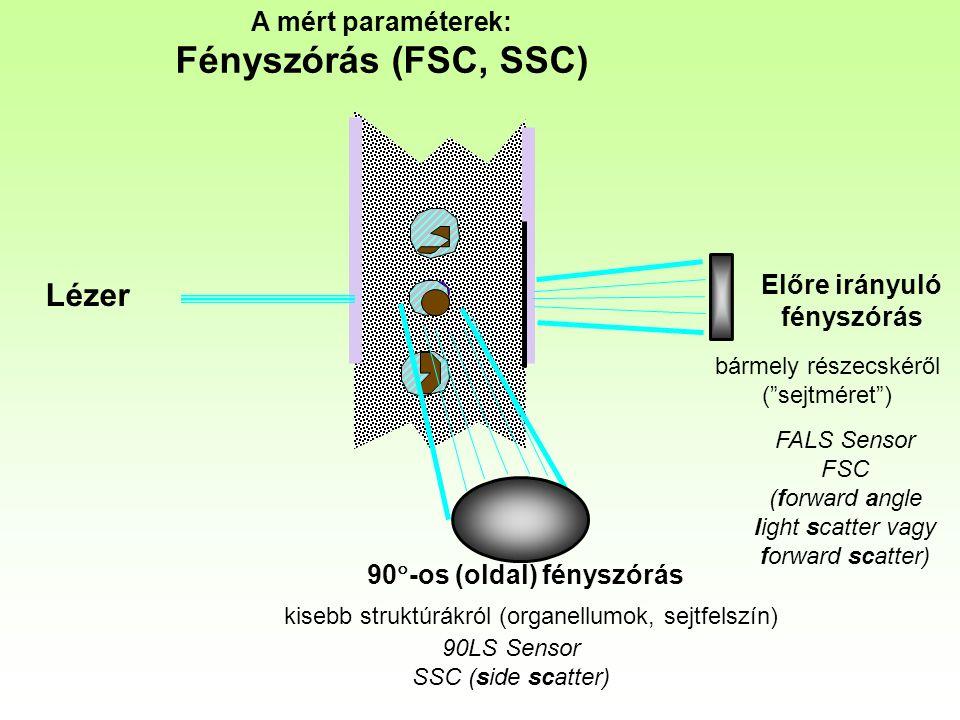 A mért paraméterek: Fényszórás (FSC, SSC) FALS Sensor FSC (forward angle light scatter vagy forward scatter) 90LS Sensor SSC (side scatter) Lézer Előre irányuló fényszórás 90  -os (oldal) fényszórás kisebb struktúrákról (organellumok, sejtfelszín) bármely részecskéről ( sejtméret )