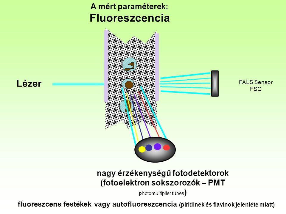 Lézer A mért paraméterek: Fluoreszcencia FALS Sensor FSC nagy érzékenységű fotodetektorok (fotoelektron sokszorozók – PMT photomultiplier tubes ) fluoreszcens festékek vagy autofluoreszcencia (piridinek és flavinok jelenléte miatt)