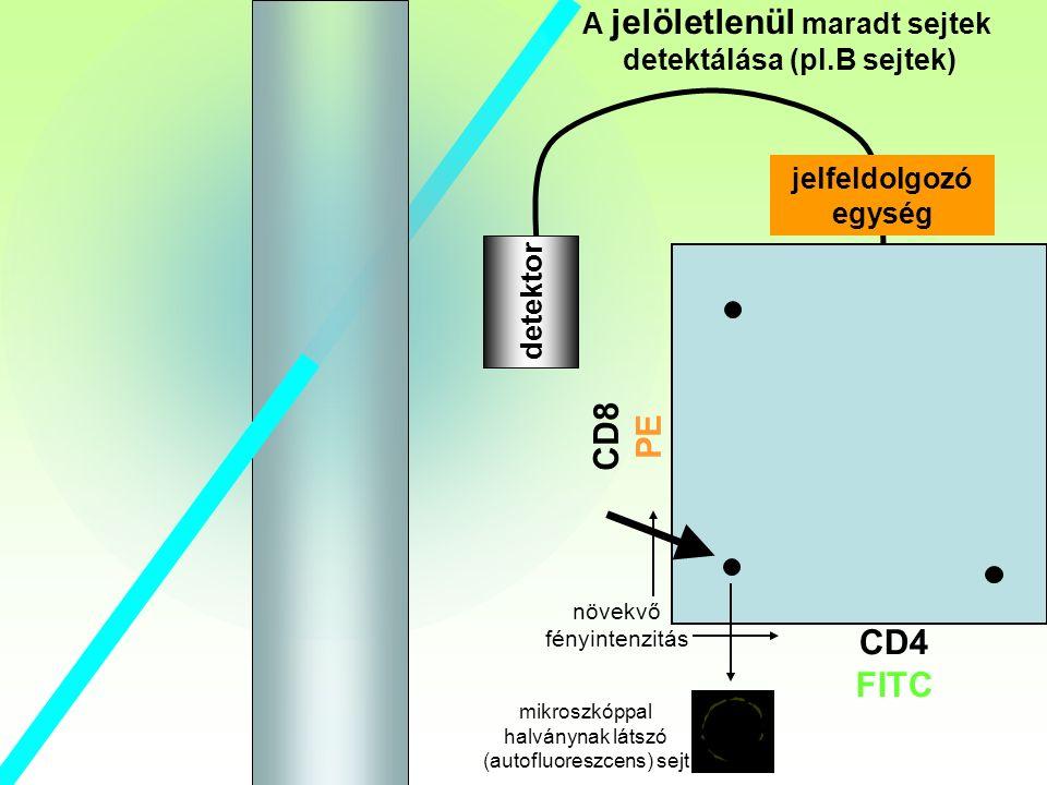 B detektor A jelöletlenül maradt sejtek detektálása (pl.B sejtek) CD8 PE CD4 FITC jelfeldolgozó egység növekvő fényintenzitás mikroszkóppal halványnak látszó (autofluoreszcens) sejt