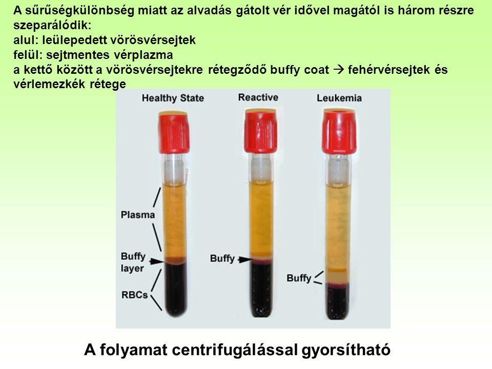 A sűrűségkülönbség miatt az alvadás gátolt vér idővel magától is három részre szeparálódik: alul: leülepedett vörösvérsejtek felül: sejtmentes vérplazma a kettő között a vörösvérsejtekre rétegződő buffy coat  fehérvérsejtek és vérlemezkék rétege A folyamat centrifugálással gyorsítható