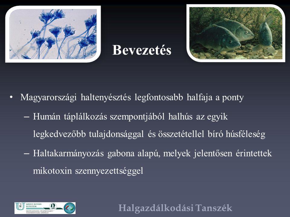 Halgazdálkodási Tanszék Bevezetés Tömegesen megjelent az aflatoxin B1 (AFB1), amelyet az Aspergillus penészgomba termel – Genotoxikus, citotoxikus, mutagén, karcinogén, hepatotoxikus – Takarmány-alapanyagokban megengedett határértéke 20 µg/kg – A halak szöveteit elfogyasztva az ember is kitett a mikotoxikózisnak
