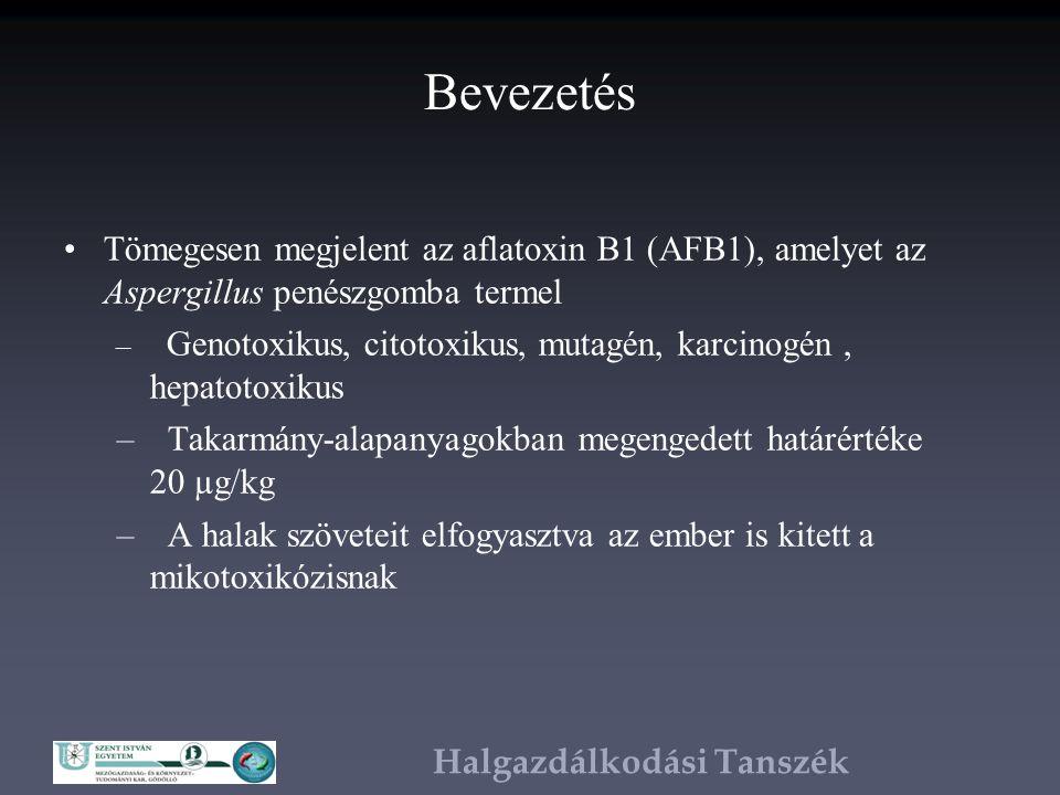 Halgazdálkodási Tanszék Köszönetnyilvánítás Dr.Hegyi Árpádnak Dr.
