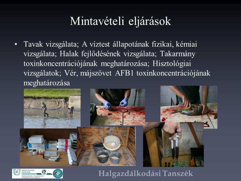 Halgazdálkodási Tanszék Mintavételi eljárások Tavak vizsgálata; A víztest állapotának fizikai, kémiai vizsgálata; Halak fejlődésének vizsgálata; Takarmány toxinkoncentrációjának meghatározása; Hisztológiai vizsgálatok; Vér, májszövet AFB1 toxinkoncentrációjának meghatározása