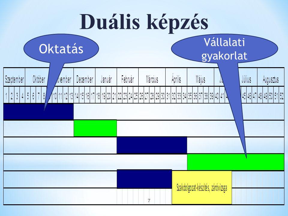 Duális képzés Oktatás Vállalati gyakorlat 7