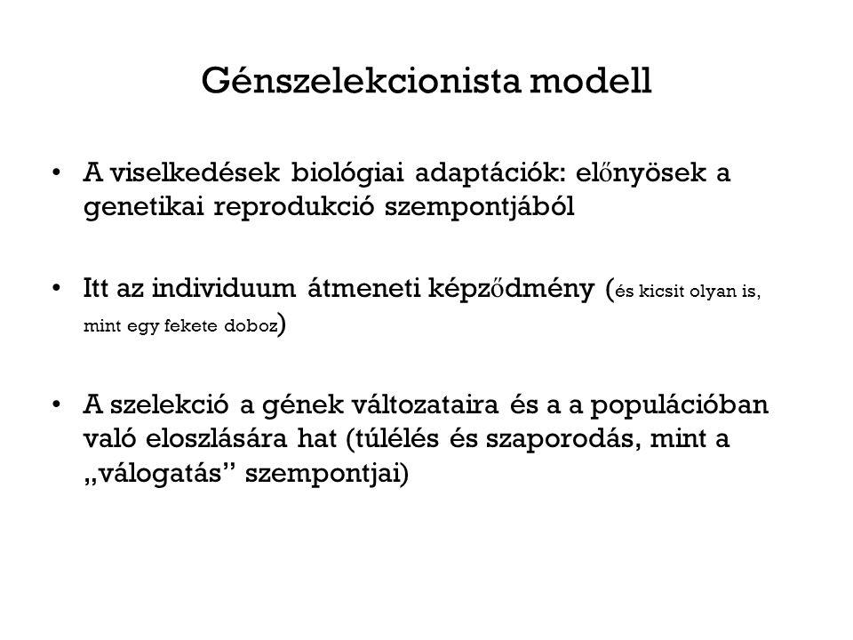 """Génszelekcionista modell A viselkedések biológiai adaptációk: el ő nyösek a genetikai reprodukció szempontjából Itt az individuum átmeneti képz ő dmény ( és kicsit olyan is, mint egy fekete doboz ) A szelekció a gének változataira és a a populációban való eloszlására hat (túlélés és szaporodás, mint a """"válogatás szempontjai)"""