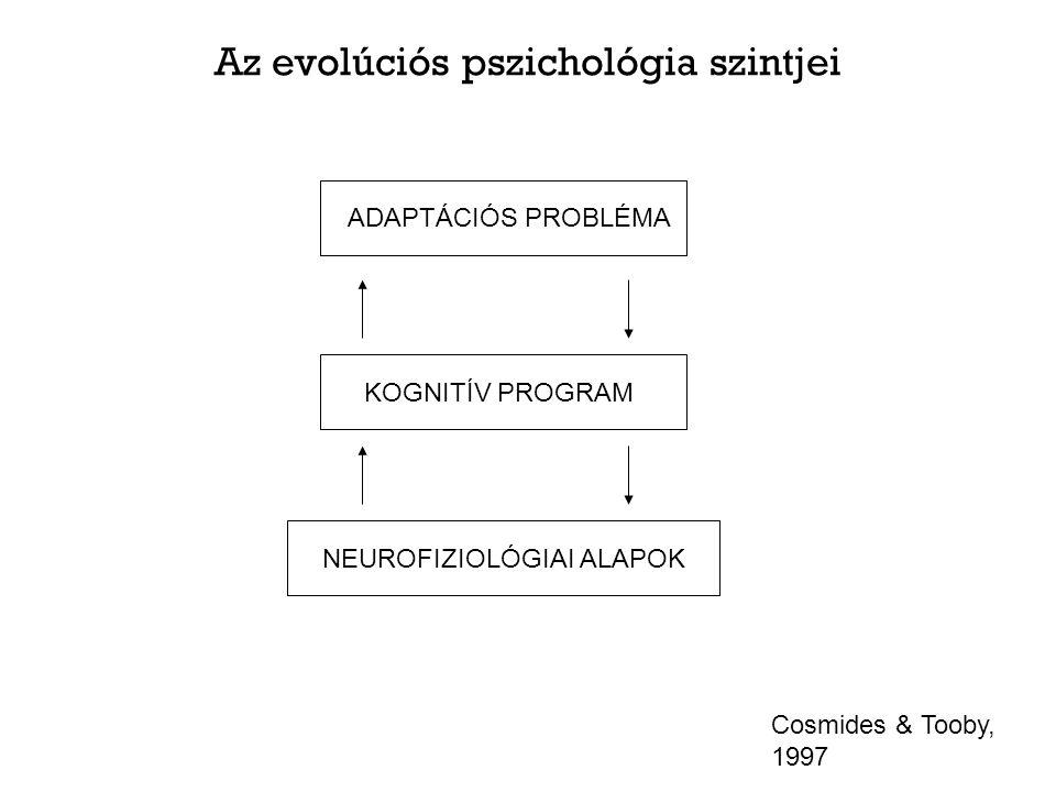 Az evolúciós pszichológia szintjei ADAPTÁCIÓS PROBLÉMA KOGNITÍV PROGRAM NEUROFIZIOLÓGIAI ALAPOK Cosmides & Tooby, 1997