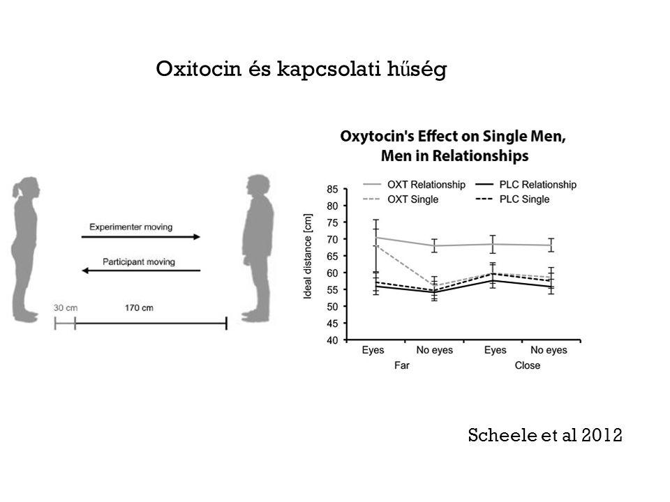 Oxitocin és kapcsolati h ű ség Scheele et al 2012