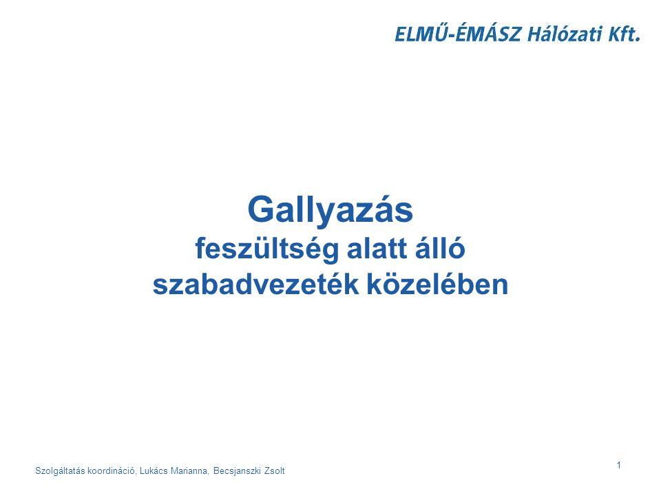 Szolgáltatás koordináció, Lukács Marianna, Becsjanszki Zsolt 2 Lehet gallyazni I.