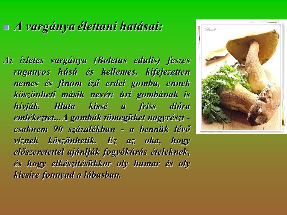Avargánya élettani hatásai: Az ízletes vargánya (Boletus edulis) feszes ruganyos húsú és kellemes, kifejezetten nemes és finom ízű erdei gomba, ennek köszönheti másik nevét: úri gombának is hívják.