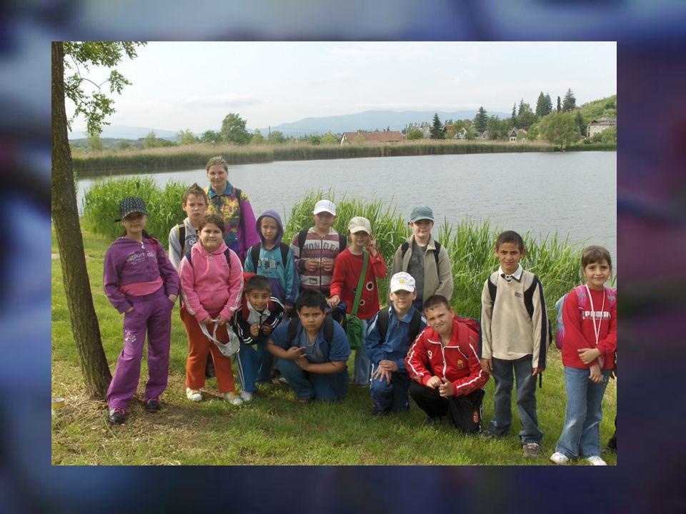 KIRÁNDULÁSOK A 3. B osztály a Mátrában a Sás-tónál