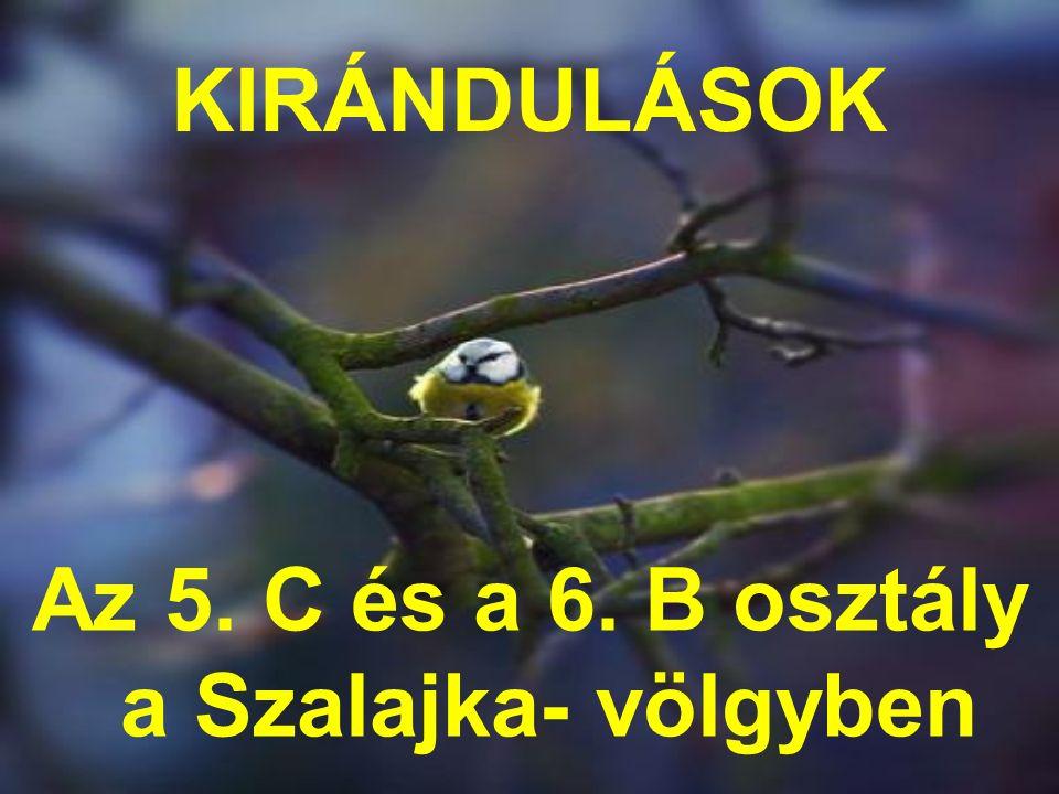 KIRÁNDULÁSOK Az 5. C és a 6. B osztály a Szalajka- völgyben
