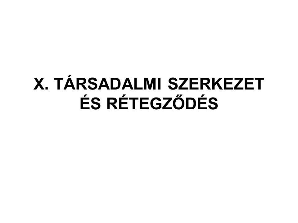 X. TÁRSADALMI SZERKEZET ÉS RÉTEGZŐDÉS