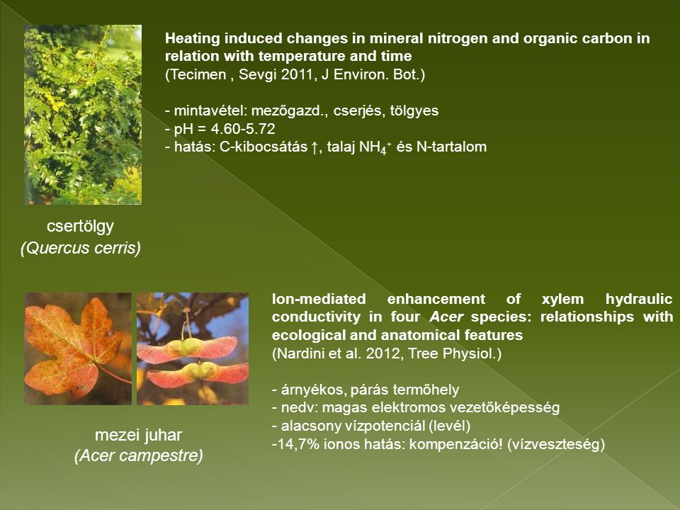 Heating induced changes in mineral nitrogen and organic carbon in relation with temperature and time (Tecimen, Sevgi 2011, J Environ.