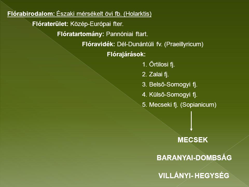 bükk kapotnyak nadragulya (Fagus sylvatica) (Asarum europaeum) (Atropa bella-donna) Bükkösök