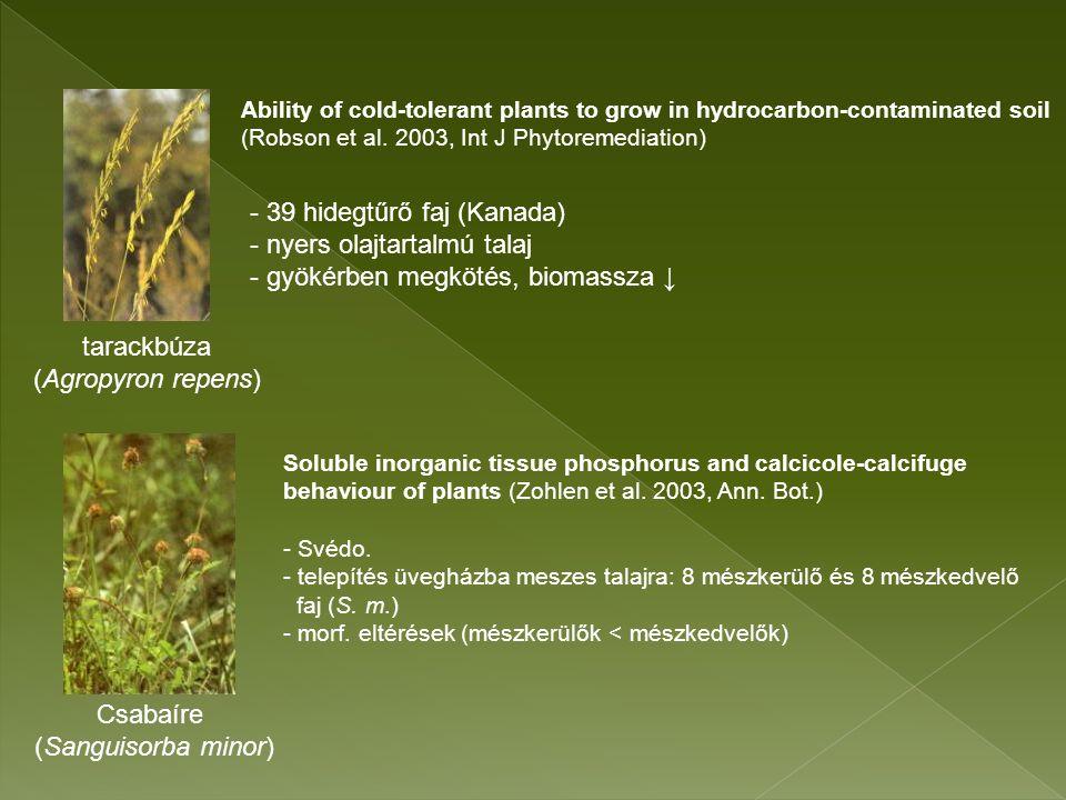 ujjas keltike odvas keltike medvehagyma hagymás fogasír (Corydalis solida) (Corydalis cava) (Allium ursinum) (Dentaria bulbifera) salátaboglárka pettyegetett tüdőfű tyúkhúr télizöld meténg (Ficaria verna) (Pulmonaria officinalis) (Stellaria media) (Vinca minor)