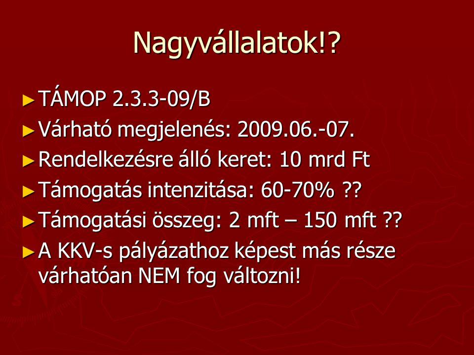 Nagyvállalatok!. ► TÁMOP 2.3.3-09/B ► Várható megjelenés: 2009.06.-07.