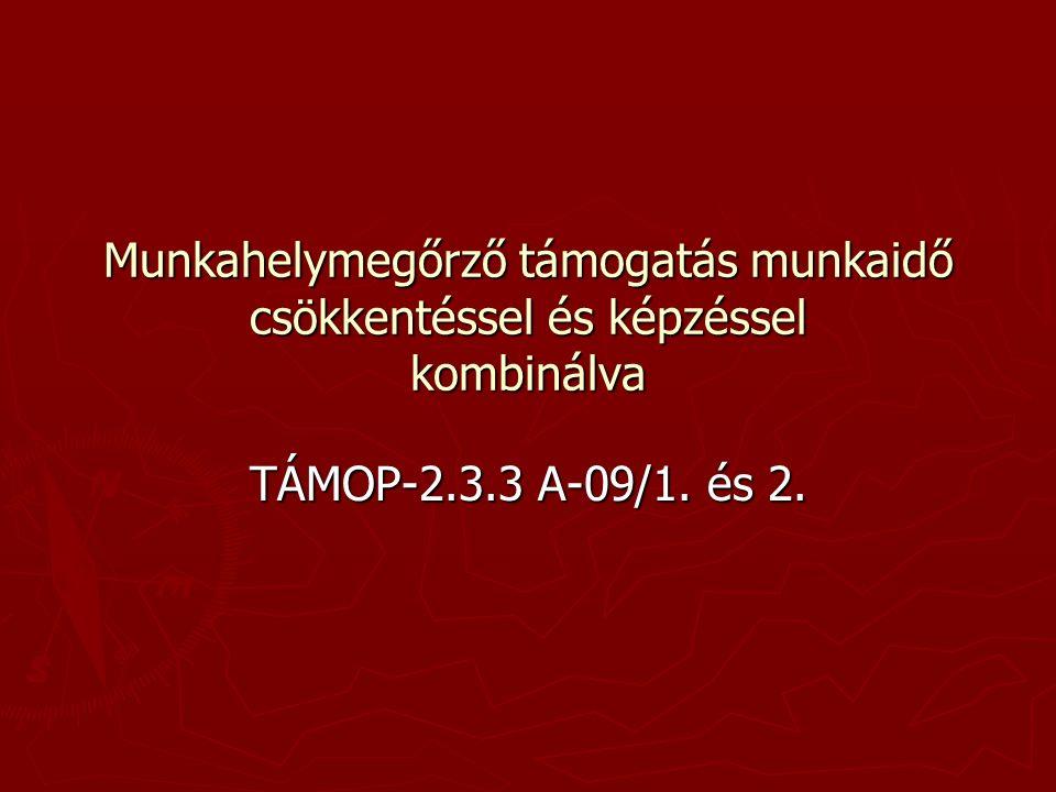Munkahelymegőrző támogatás munkaidő csökkentéssel és képzéssel kombinálva TÁMOP-2.3.3 A-09/1. és 2.