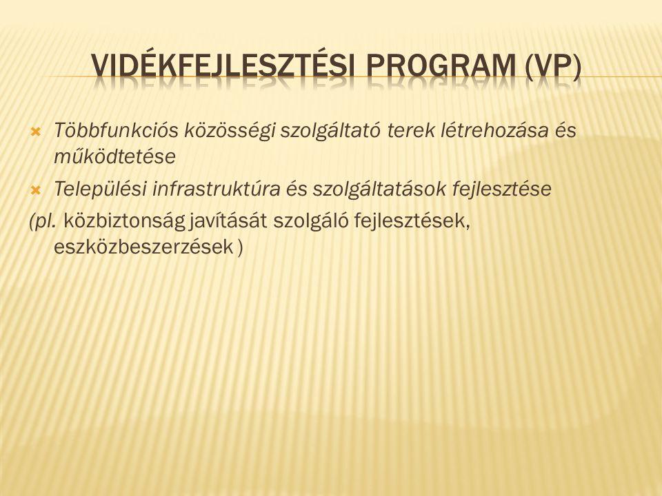  Többfunkciós közösségi szolgáltató terek létrehozása és működtetése  Települési infrastruktúra és szolgáltatások fejlesztése (pl.