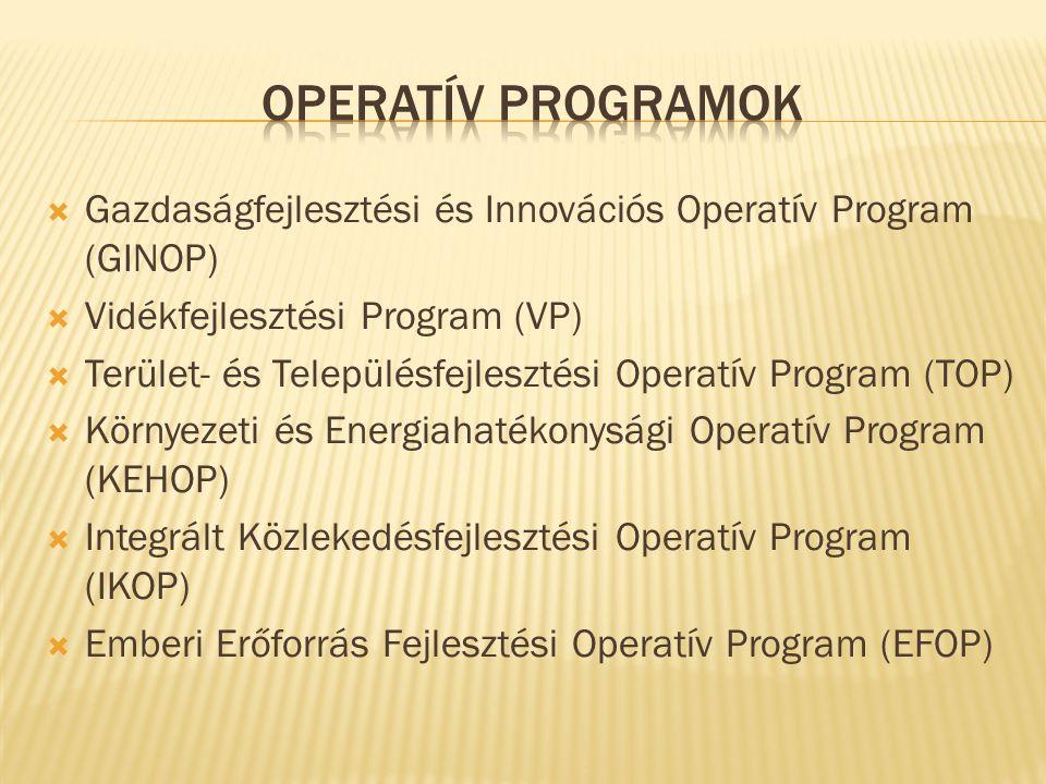  Gazdaságfejlesztési és Innovációs Operatív Program (GINOP)  Vidékfejlesztési Program (VP)  Terület- és Településfejlesztési Operatív Program (TOP)  Környezeti és Energiahatékonysági Operatív Program (KEHOP)  Integrált Közlekedésfejlesztési Operatív Program (IKOP)  Emberi Erőforrás Fejlesztési Operatív Program (EFOP)