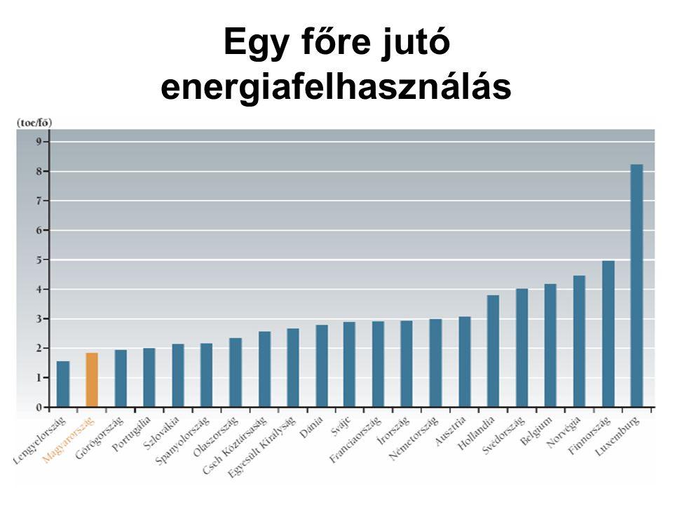 Egy főre jutó energiafelhasználás
