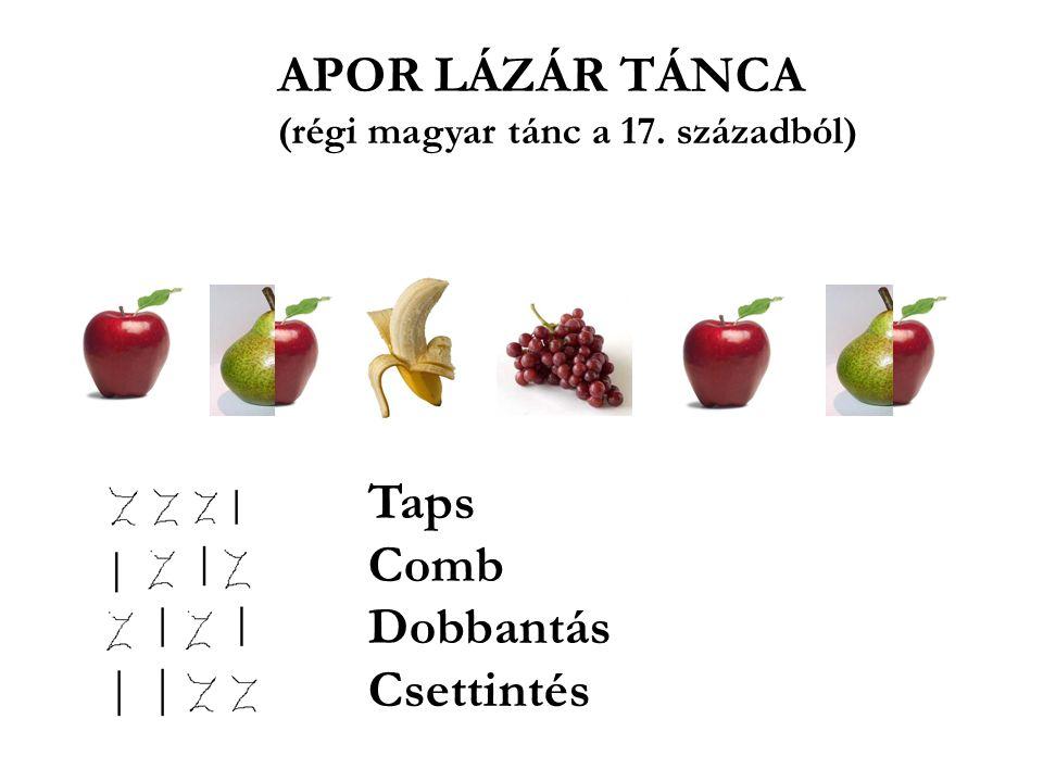 Taps Comb Dobbantás Csettintés APOR LÁZÁR TÁNCA (régi magyar tánc a 17. századból)