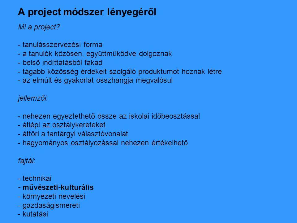 A pályázati project alapkoncepciója - 9.