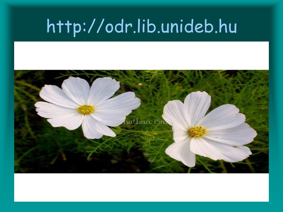 http://odr.lib.unideb.hu