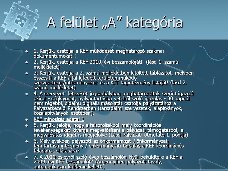 """A felület """"A kategória 1. Kérjük, csatolja a KEF működését meghatározó szakmai dokumentumokat ."""
