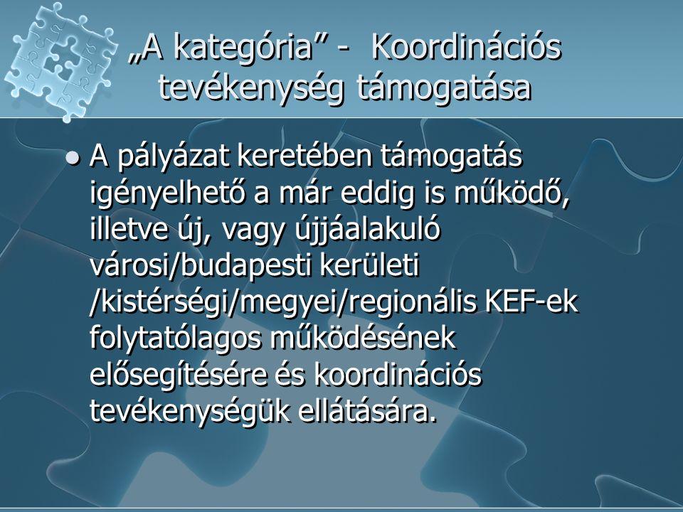 """""""A kategória - Koordinációs tevékenység támogatása A pályázat keretében támogatás igényelhető a már eddig is működő, illetve új, vagy újjáalakuló városi/budapesti kerületi /kistérségi/megyei/regionális KEF-ek folytatólagos működésének elősegítésére és koordinációs tevékenységük ellátására."""