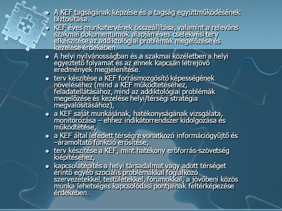 Tevékenységek KEF ülések szervezése, továbbképzés a KEF tagok számára, szakmai konferenciákon való részvétel, médiumokkal való együttműködés, városi/kerületi/kistérségi/regionális konferencia szervezése, egyéb szakmai rendezvény (szakmai kerekasztal, kutatási adatok ismertetése, stb.), szakmai tanulmányút a KEF tagság számára (más KEF látogatása és/vagy szakintézmény látogatás), KEF működtetésével kapcsolatos tevékenységek (pl.