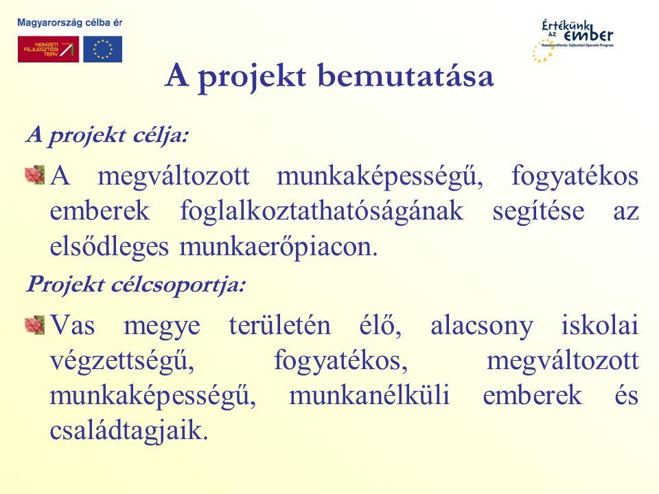 A projekt bemutatása A projekt célja: A megváltozott munkaképességű, fogyatékos emberek foglalkoztathatóságának segítése az elsődleges munkaerőpiacon.