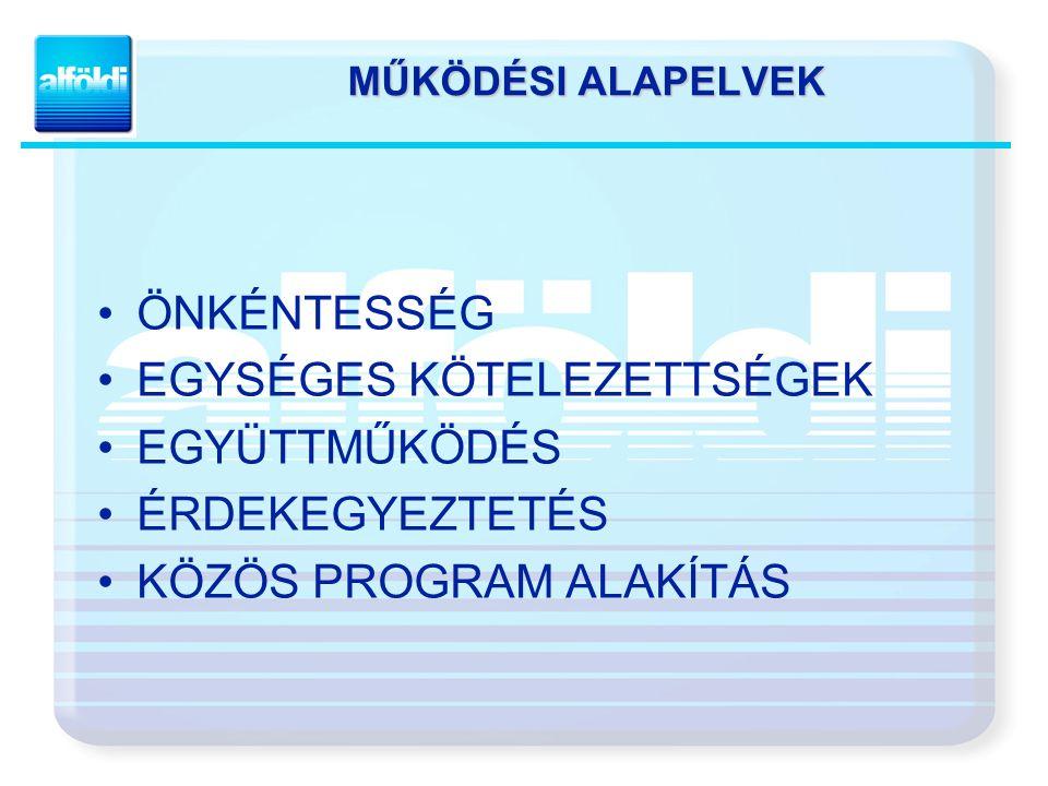 EXPORT MEGOSZLÁS 38% 37%