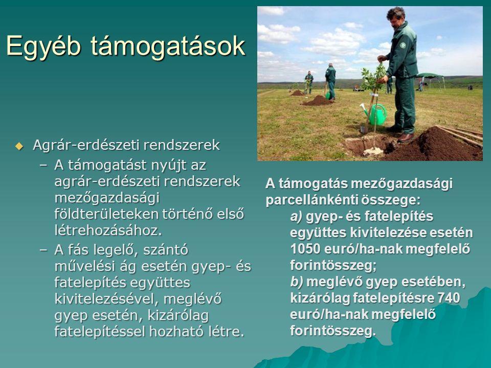 Egyéb támogatások  Agrár-erdészeti rendszerek –A támogatást nyújt az agrár-erdészeti rendszerek mezőgazdasági földterületeken történő első létrehozás