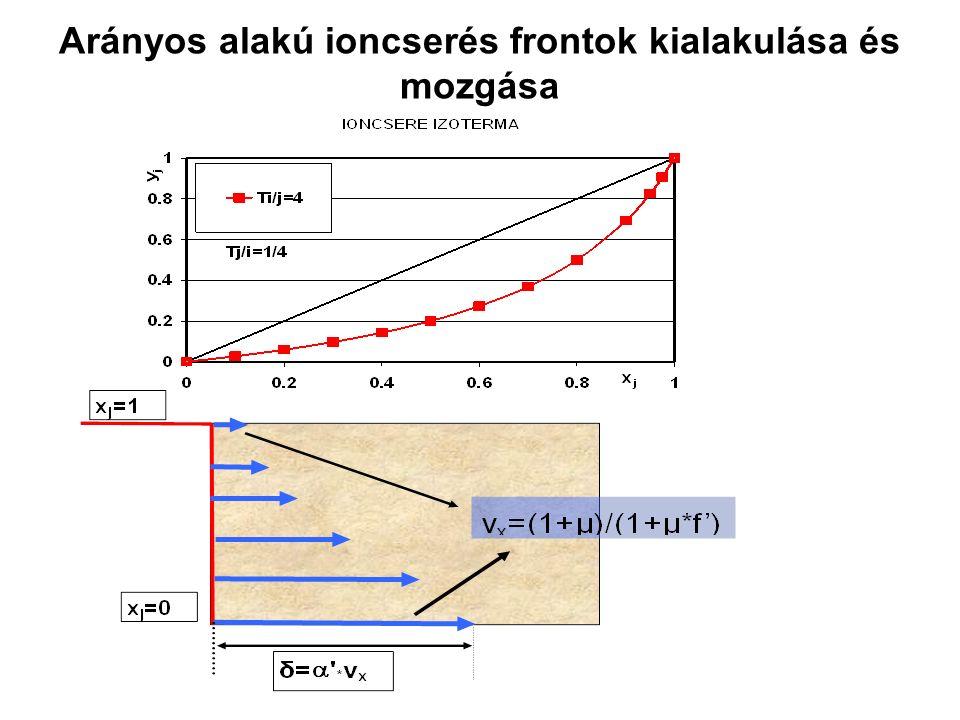 Arányos alakú ioncserés frontok kialakulása és mozgása