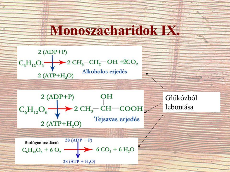 Monoszacharidok IX. Glükózból lebontása